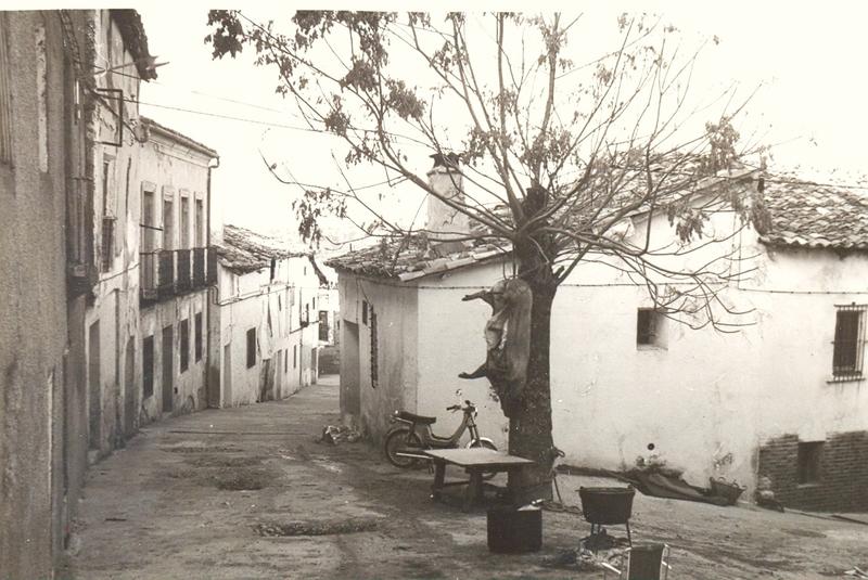 198502_Cochino.jpg